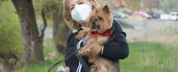 Britische Corona-Mutation für Haustiere gefährlicher als Ursprungsform