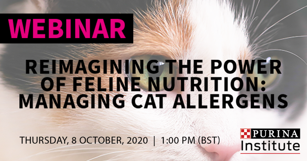 Free webinar recording – Reimagining the power of feline nutrition: managing cat allergens