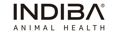 INDIBA' Animal Health - A New Era in Animal Rehabilitation