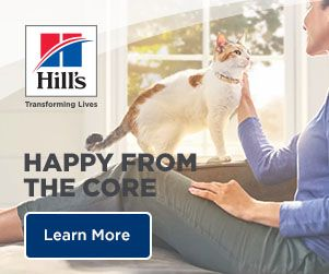 HILL'S PET NUTRITION INTRODUCES NEW, CLINICALLY PROVEN  GI ACTIVBIOME+ TECHNOLOGY TO PRESCRIPTION DIET RANGE