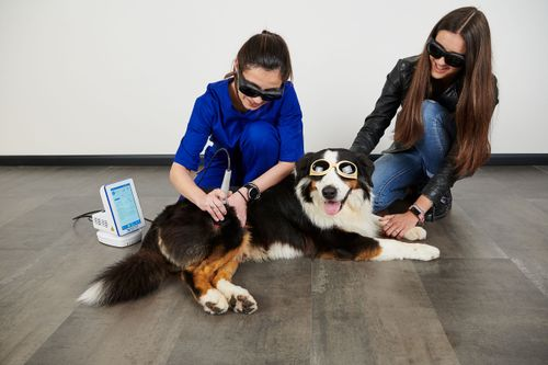 INTRO ABOUT LASER THERAPY