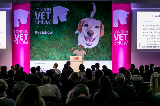 10 sessions you don't want to miss at LVS!