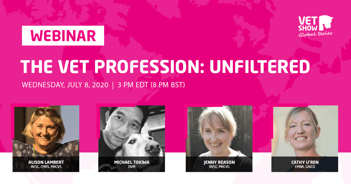 The Vet Profession: Unfiltered [A Recap of our Global Series Finale]
