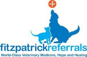 Fitzpatrick Referrals ' giving routine procedures the special treatment