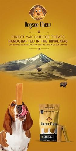 Finest Yak cheese treat handcrafted in the Himalayas. Vet Exclusive.