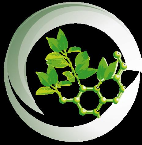 Chlorella pyrenoidosa, your natural health partner!