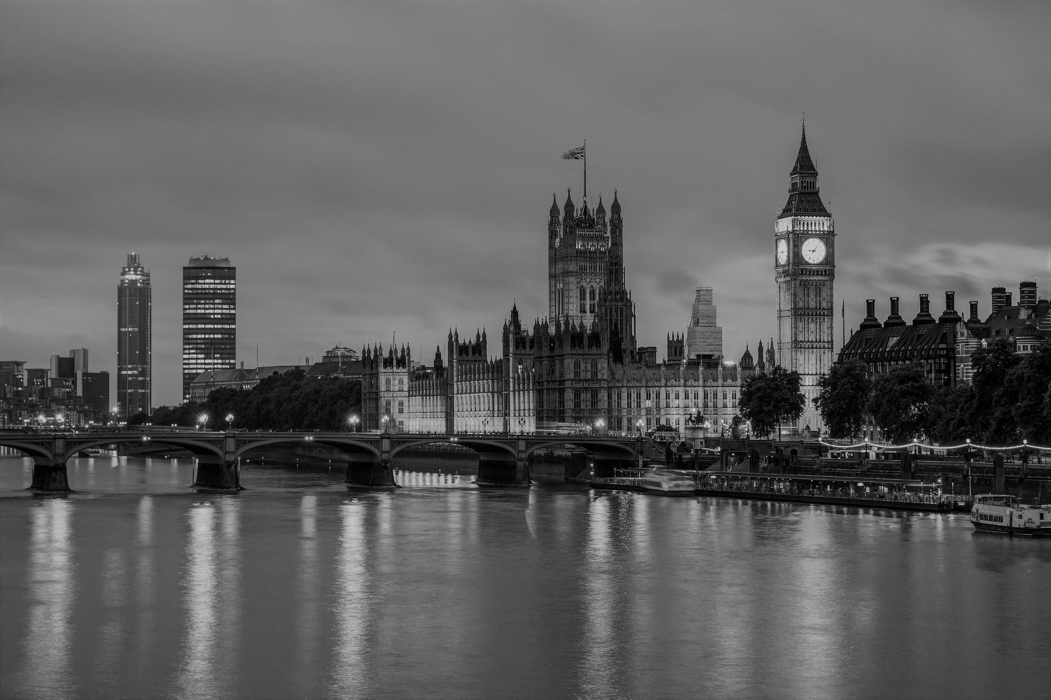 London Vet