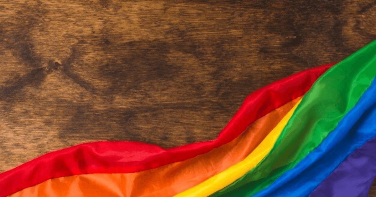PrideVMC: Inclusion in the Veterinary Community