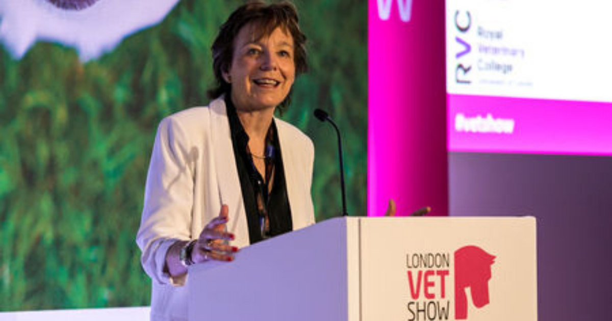 Vet Show Global Series—Backstage with Professor Jill Maddison
