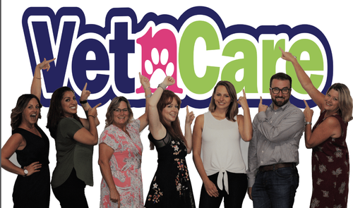 VetnCare. Our Story...