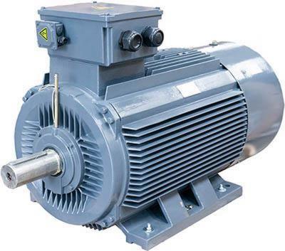 TEC Large Frame Motor range