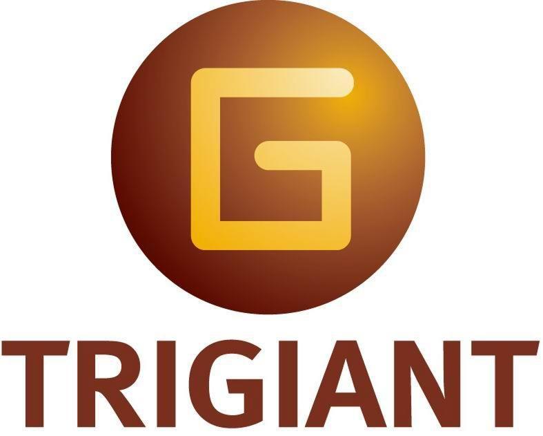 Jiangsu Trigiant Technology Co., Ltd.