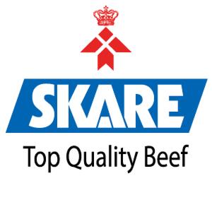 Skare Group