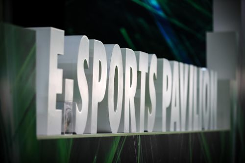 Should eSports be government-backed? Leading figures from across the booming video game streaming industry tell CABSAT just that