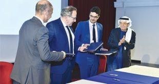 Daman Leads UAE insurance Sector in Emiratisation Efforts