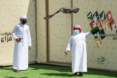Young Emiratis keep sport of falconry fly higher at Fakhr Al Ajyal Championship