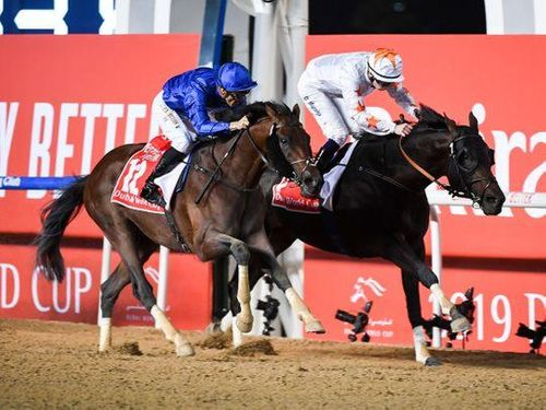 UAE racing moves up a gear with high-quality card at Meydan Racecourse on Thursday