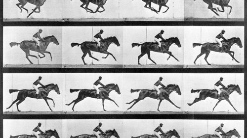 On This Day: Photographer creates first moving picture of a horse galloping