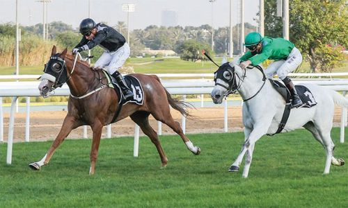 Hameem puts unbeaten record on the line in Abu Dhabi feature