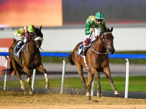 Military Law declared at Meydan as Al Muheira galloper guns down fancied rivals