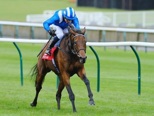 Horse racing: Dazzling victory for Sheikh Hamdan