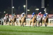 Top notch horses from 17 countries eye 2020 Dubai World Cup Carnival