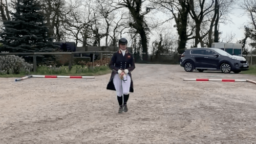 Dressage with a difference: hobby horses at the ready to help NHS
