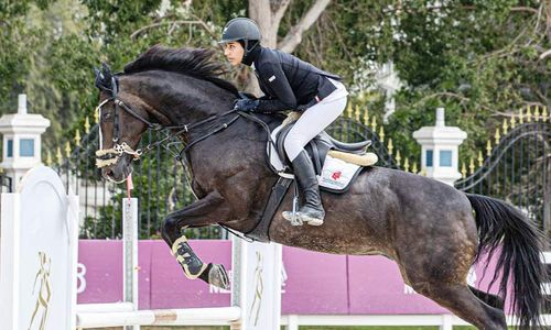 Competitors strike it rich on day 2 of FBMA International Show Jumping Cup