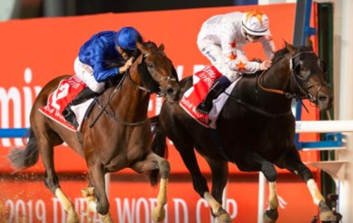 Coronavirus Outbreak: Dubai World Cup 2020 postponed as COVID-19 outbreak worsens in UAE