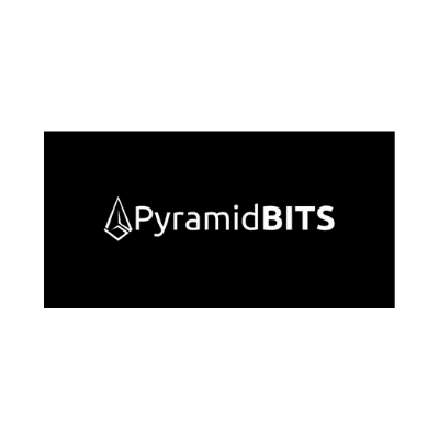 Pyramid bits