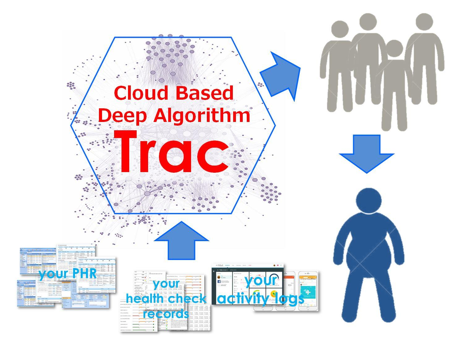 "Deep Algorithm ""Trac"" β to launch"