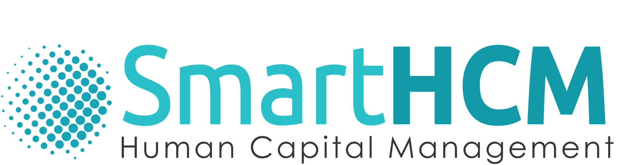 SofDigital Systems (SMCPvt Ltd)