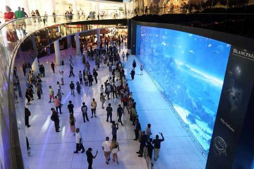 High Optimism: UAE consumers sold on recovery