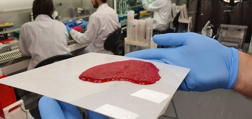 Meat-Tech 3D expands cultured meat with printed tissue and acquisition