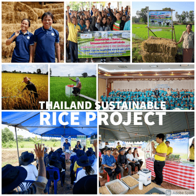 Sustainable Rice Product