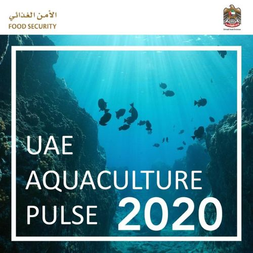 Minister of State for Food Security launches UAE Aquaculture Pulse 2020 guideline