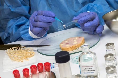 How science and evidence can drive food safety changes