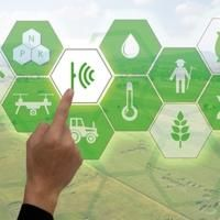 "FAO and Johns Hopkins launch online dashboard for ""better global food policies"""