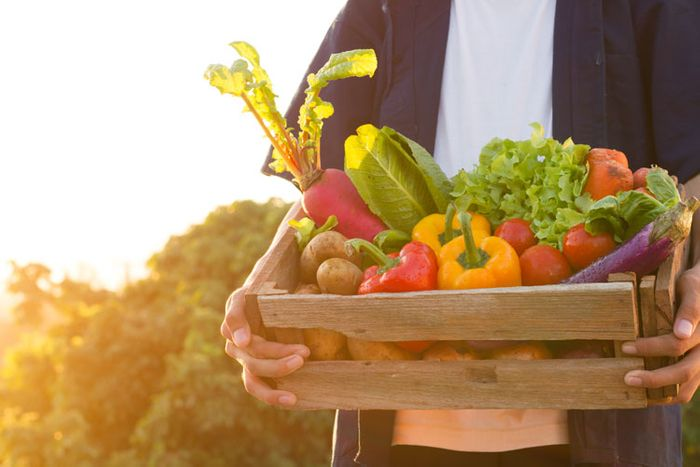 Plant-based diets to positively impact carbon levels