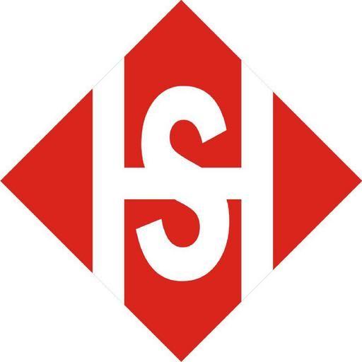 Sae Hwamex S.A. de C.V.