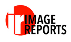 Image Reports