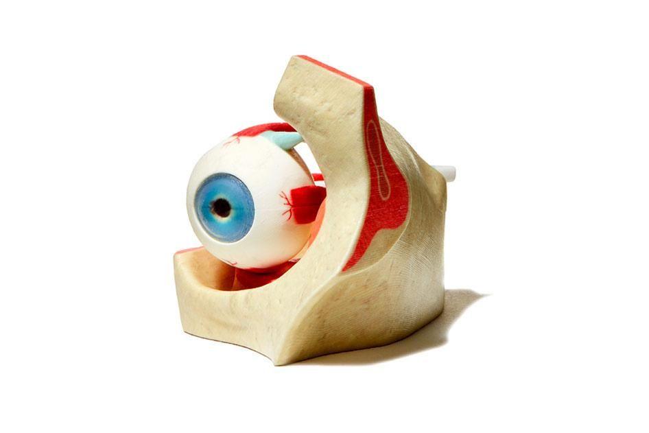 Mimaki Medical Eye