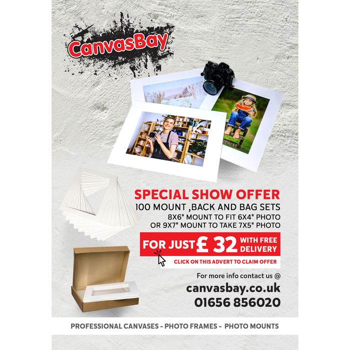 100 Picture Mount, Backs & Bags for £32