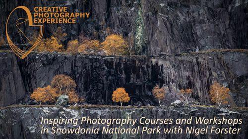 Snowdonia National Park Workshops