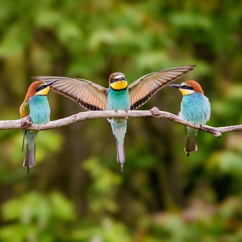 Bird spreading wings
