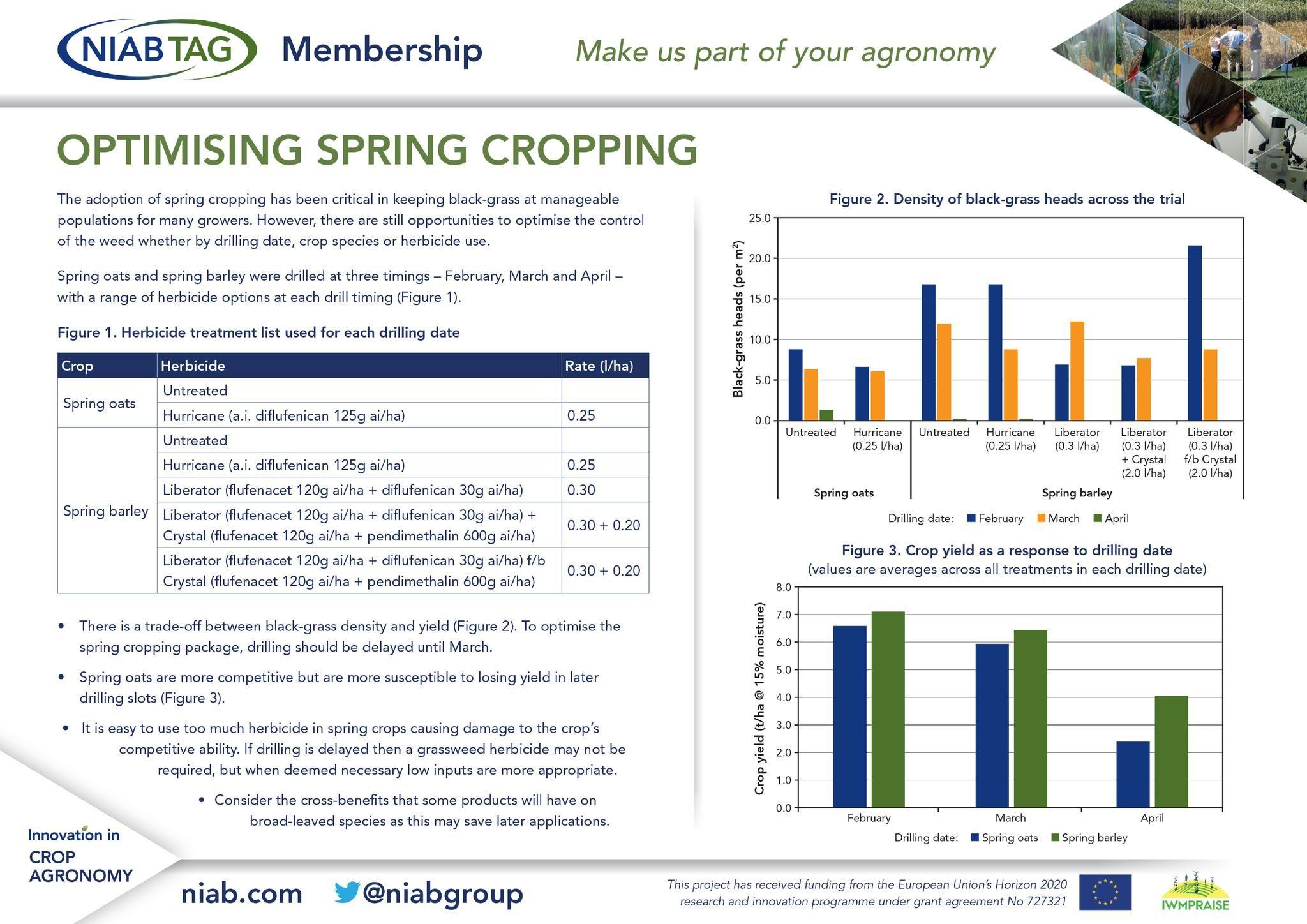 Optimising spring cropping