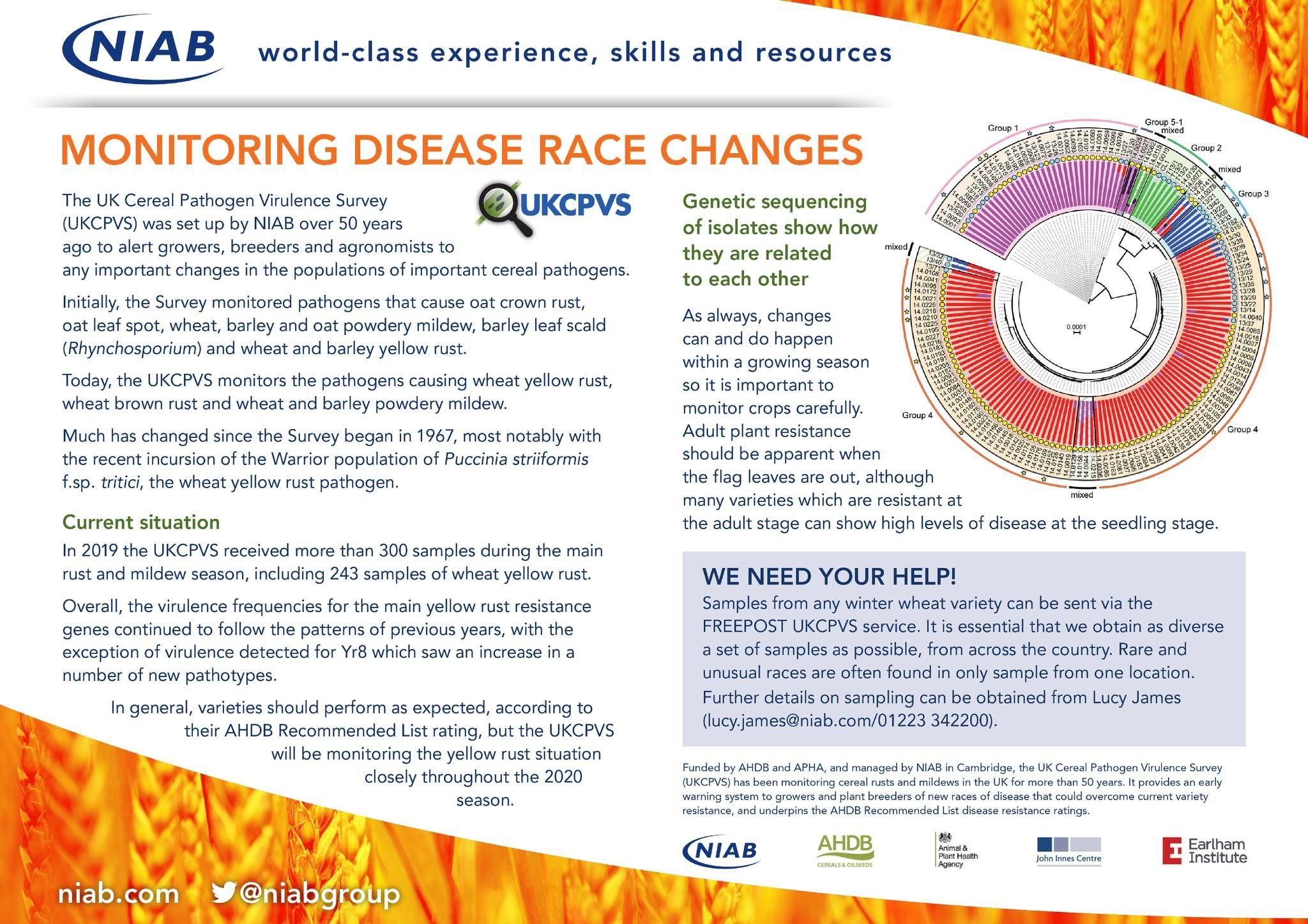 Monitoring disease race changes - poster