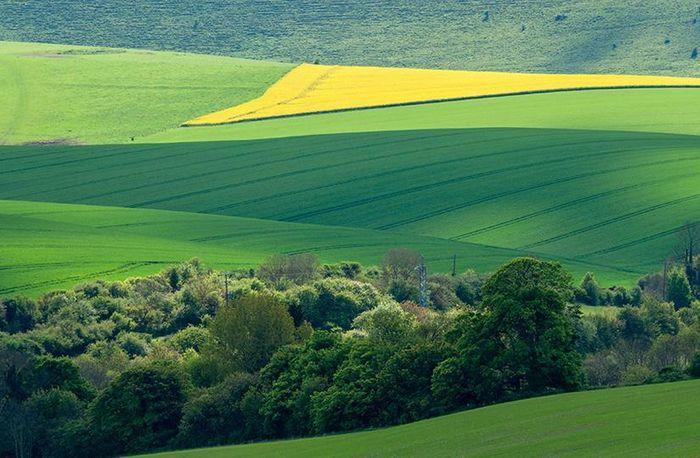 Rethinking the arable rotation