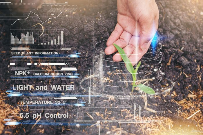 New postgraduate courses in data science and agricultural economics