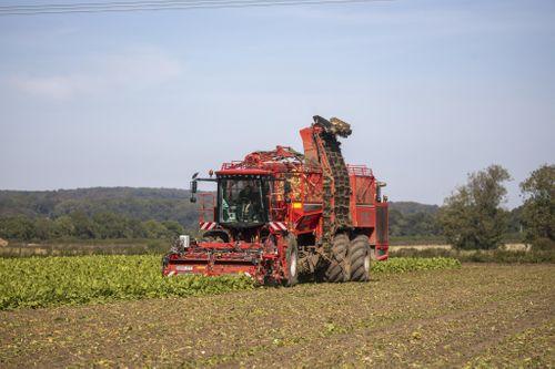 HOLMER Sugar Beet Harvesters